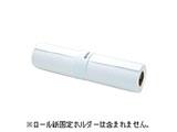 【純正】 プロフェッショナルフォトペーパー<薄手光沢> (約914mm幅×30.5m)PXMC36R12