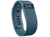 fitbit charge Large (FB404SLL-JPN)