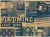 【アニメガ特典対象】 A3! BLOOMING LIVE 2019 幕張公演版 DVD ◆アニメガ限定特典「2L判ブロマイド(春組キャストスチール使用)」