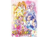 ドキドキ!プリキュア DVD版 全16巻セット