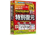 〔Win版〕 ファイナルデータ11plus 特別復元版 アカデミック