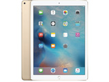 iPad Pro 12.9 Wi-Fi +Cellular 128GB ゴールド ML2K2J/A docomo