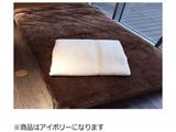 シンサレート毛布(シングルサイズ/140×200cm/アイボリー)