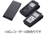 LS-P2/DM-720用レザーケース CS150