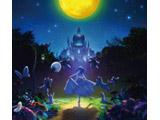 Aimer / 劇場版 Fate/stay night[Heaven's Feel] II.lost butterfly 主題歌「I beg you」 期間生産限定盤 CD