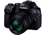 LUMIX G99【高倍率ズームレンズキット】DC-G99H-K/ミラーレス一眼カメラ