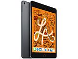 iPad mini 7.9インチ Retinaディスプレイ Wi-Fiモデル MUU32J/A(256GB・スペースグレイ)(2019) [256GB]