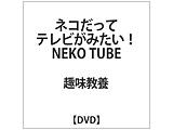 ネコだってテレビがみたい!NEKO TUBE DVD