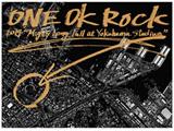 ONE OK ROCK/ONE OK ROCK 2014 Mighty Long Fall at Yokohama Stadium 通常版 【DVD】