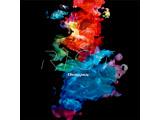 RAISE A SUILEN / 1st Single「R・I・O・T」【通常盤】 CD