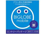 ナノSIM/マイクロSIM/標準SIM 「BIGLOBEモバイル」 音声/データ共用 ※SIMカード後日発送 Select_KIT_W