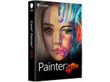 Painter 2019