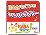 〔Win版〕 KARAサクッ!PRO