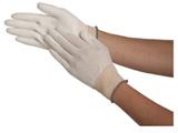 簡易包装パームライト手袋10双入 Lサイズ B0502L10P