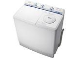 2槽式洗濯機 「青空」(12kg) PS-120A-W ホワイト