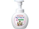 【キレイキレイ】 薬用泡ハンドソープ 250ml〔ハンドソープ〕