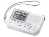 メモリーカードレコーダー ICD-LX31