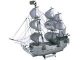 メタリックナノパズル TMP-01 ブラックパール号