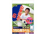 ウチワ用ラベル 光沢紙(A4判・8シート) 38906