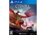 シタデル:永炎の魔法と古の城塞 【PS4ゲームソフト】
