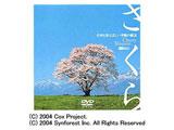 さくら 名所を彩る美しい季節の魔法 〜Cherry Blossom〜