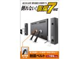 TV用耐震ベルト/~75V用/強力粘着シールタイプ/2本入 TS-002N2