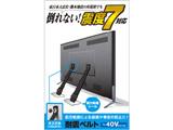 TV用耐震ベルト/~40V用/ネジどめタイプ(VESA穴)/2本入 TS-005N