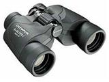 双眼鏡 8×40 DPS I