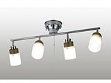 LEDスポットライト(〜4.5畳) TLG-420 電球色