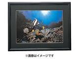 アルミ写真額 (2L/ブラック) E-8001