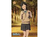 セイレン 第5巻 桃乃今日子 上巻【Blu-ray】[PCXE-50755][Blu-ray/ブルーレイ] 製品画像