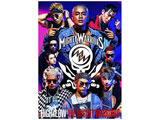 HiGH & LOW THE MIGHTY WARRIORS 【DVD】   [DVD]