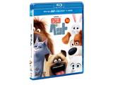 ペット 3D+ブルーレイ+DVDセット(3枚組) BD