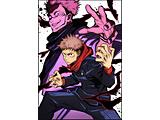 呪術廻戦 Vol.1 初回生産限定版 BD