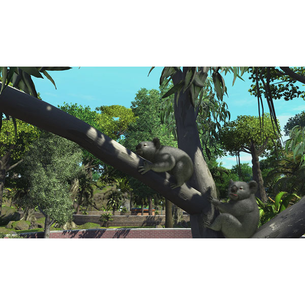 Zoo Tycoon:Ultimate Animal Collection 【Xbox Oneゲームソフト】_1