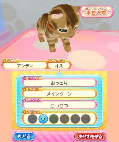 わんニャンどうぶつ病院 ペットのお医者さんになろう! 【3DSゲームソフト】_6