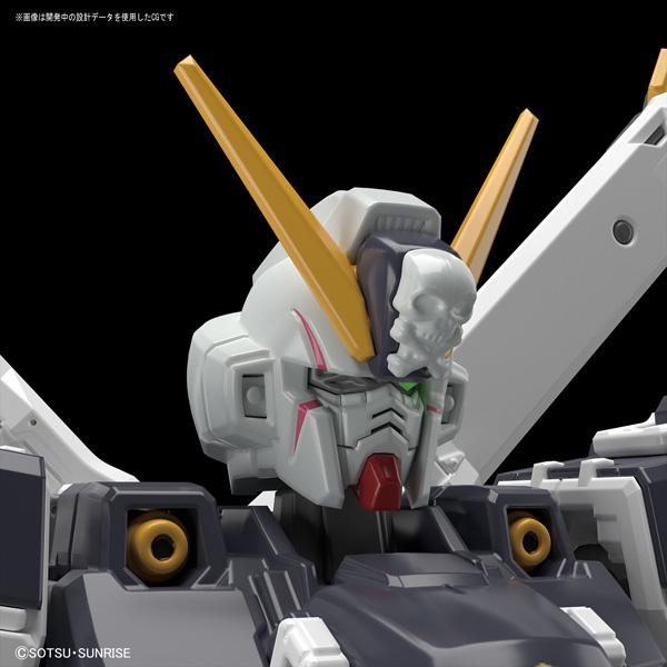 RG 1/144 クロスボーン・ガンダムX1【機動戦士クロスボーン・ガンダム】_6