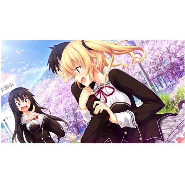 ノラと皇女と野良猫ハート HD 通常版 【PS4ゲームソフト】_4