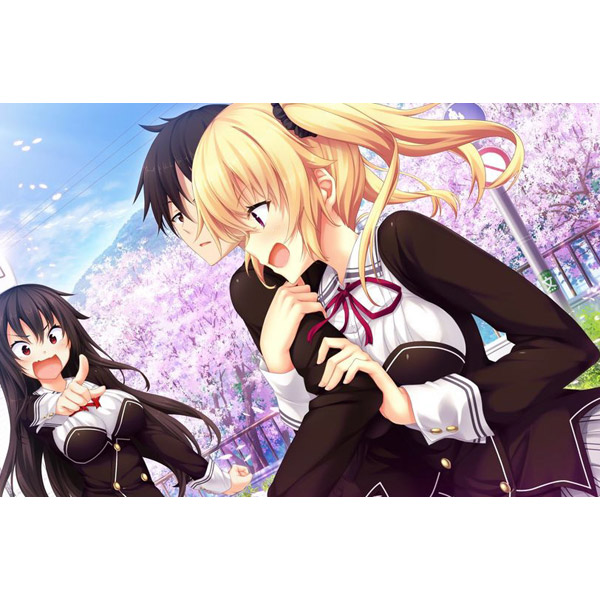 ノラと皇女と野良猫ハート HD 通常版 【Switchゲームソフト】_4