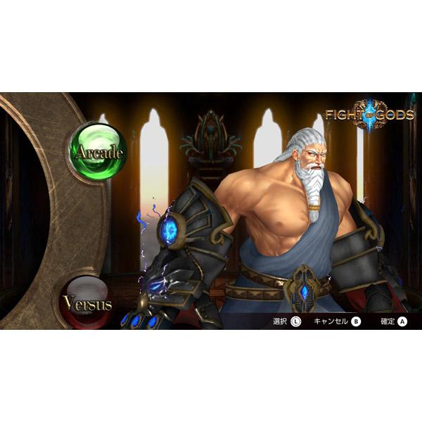 Fight of Gods 通常版 【Switchゲームソフト】_5