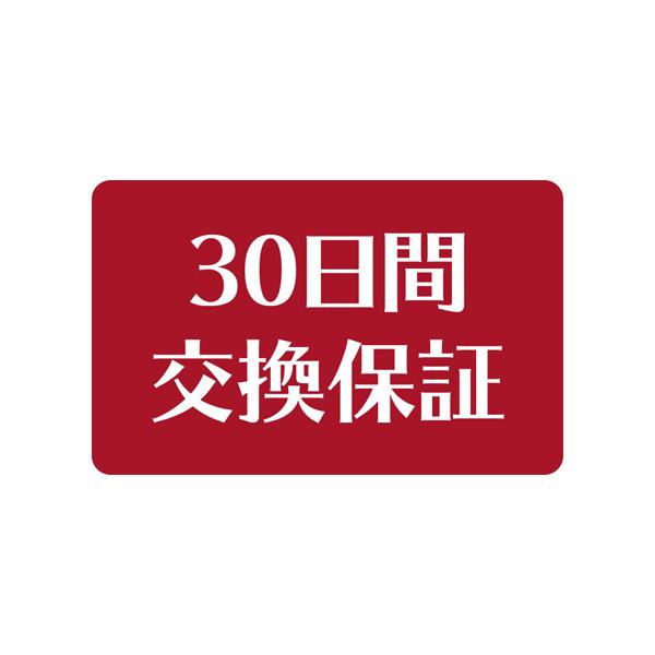 30日間交換保証付き ブルーライトカット0.2mm厚極薄ダブルストロングガラスフィルム CP-3SSLGF/DX 【Switch Lite】_1