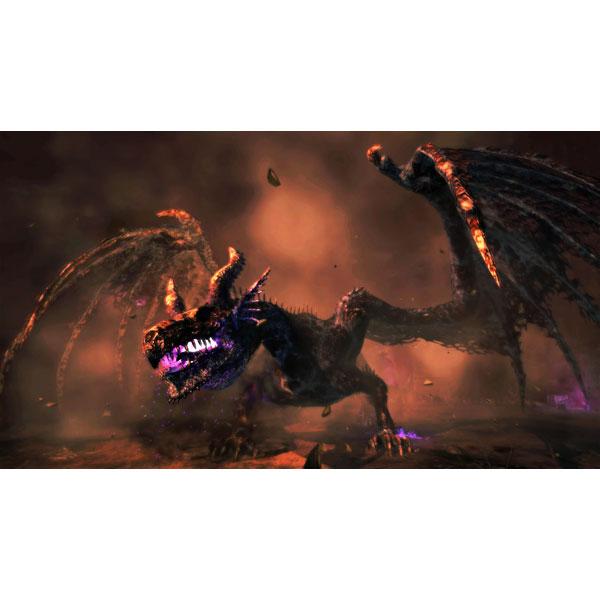 ドラゴンズドグマ:ダークアリズン 【PS4ゲームソフト】_10