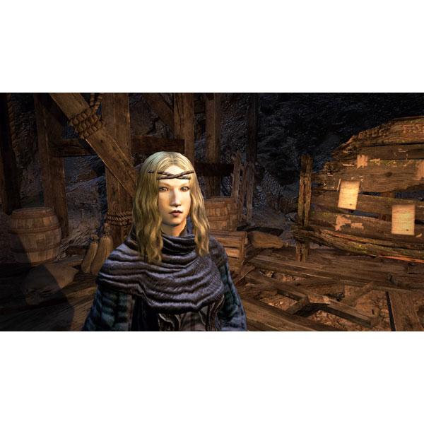 ドラゴンズドグマ:ダークアリズン 【PS4ゲームソフト】_6