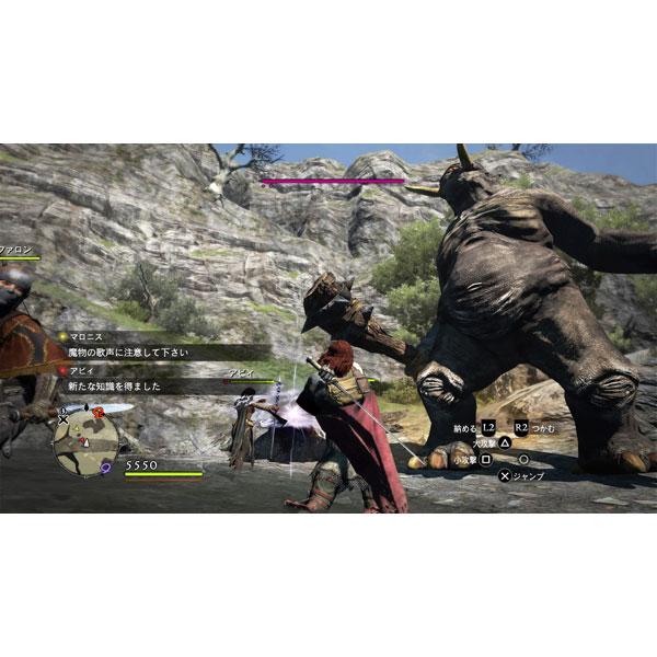 ドラゴンズドグマ:ダークアリズン 【PS4ゲームソフト】_8