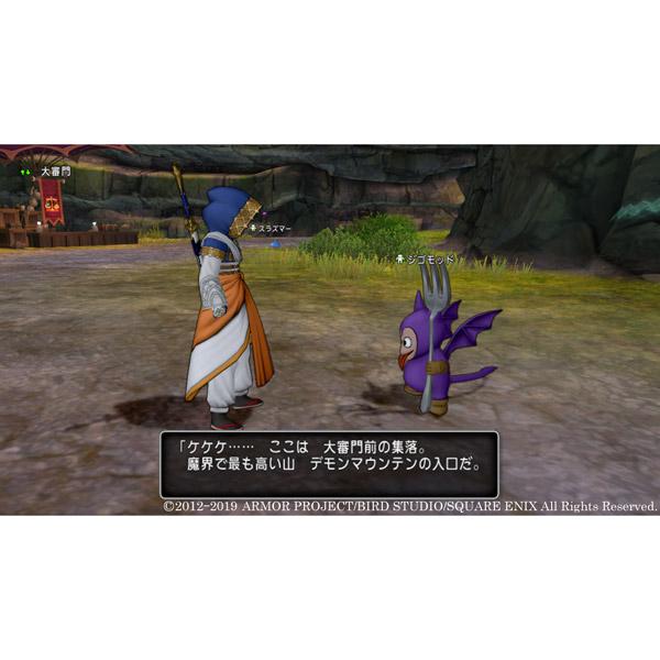 ドラゴンクエストX いばらの巫女と滅びの神 オンライン 【PS4ゲームソフト】_3