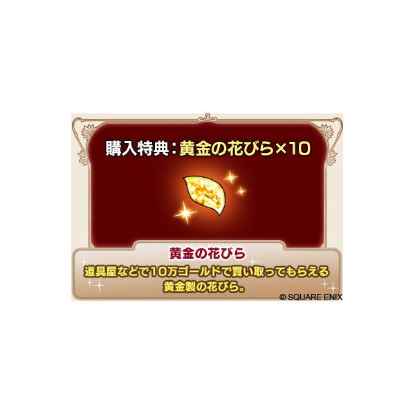 ドラゴンクエストX オールインワンパッケージ version1-5   SE-W0032 [Switch]_10