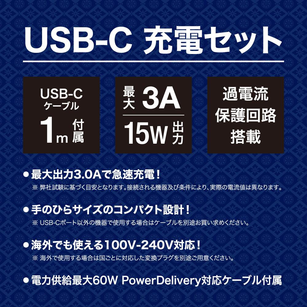 SwitchLite用 USB-C 充電器セット グレー BKS-NSL009  グレー BKS-NSL009_5