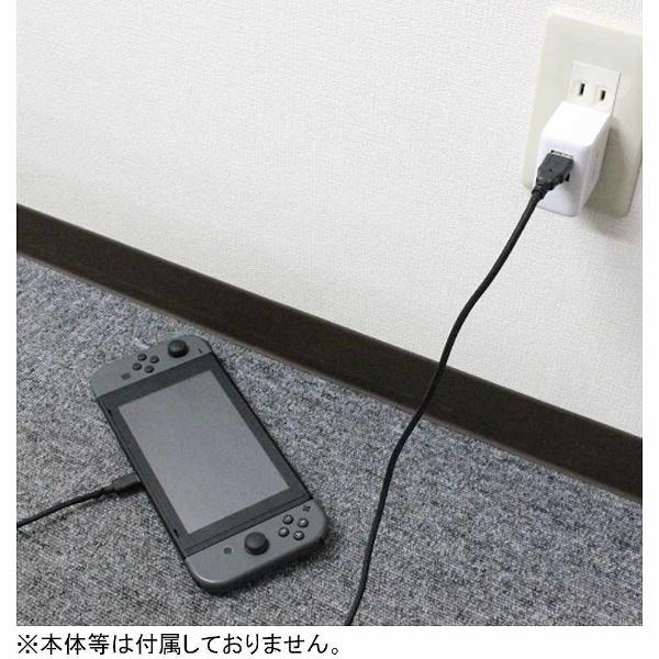 【在庫限り】 Switch用Type-C充電ケーブル 0.8m [Switch] [BKS-NSTC80] 【ビックカメラグループオリジナル】_2