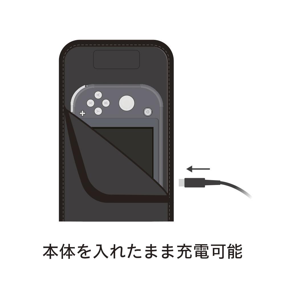 スリップインケース ブラック/ブラック CP-3SSLC5/BB CP-3SSLC5/BB ブラック/ブラック_2